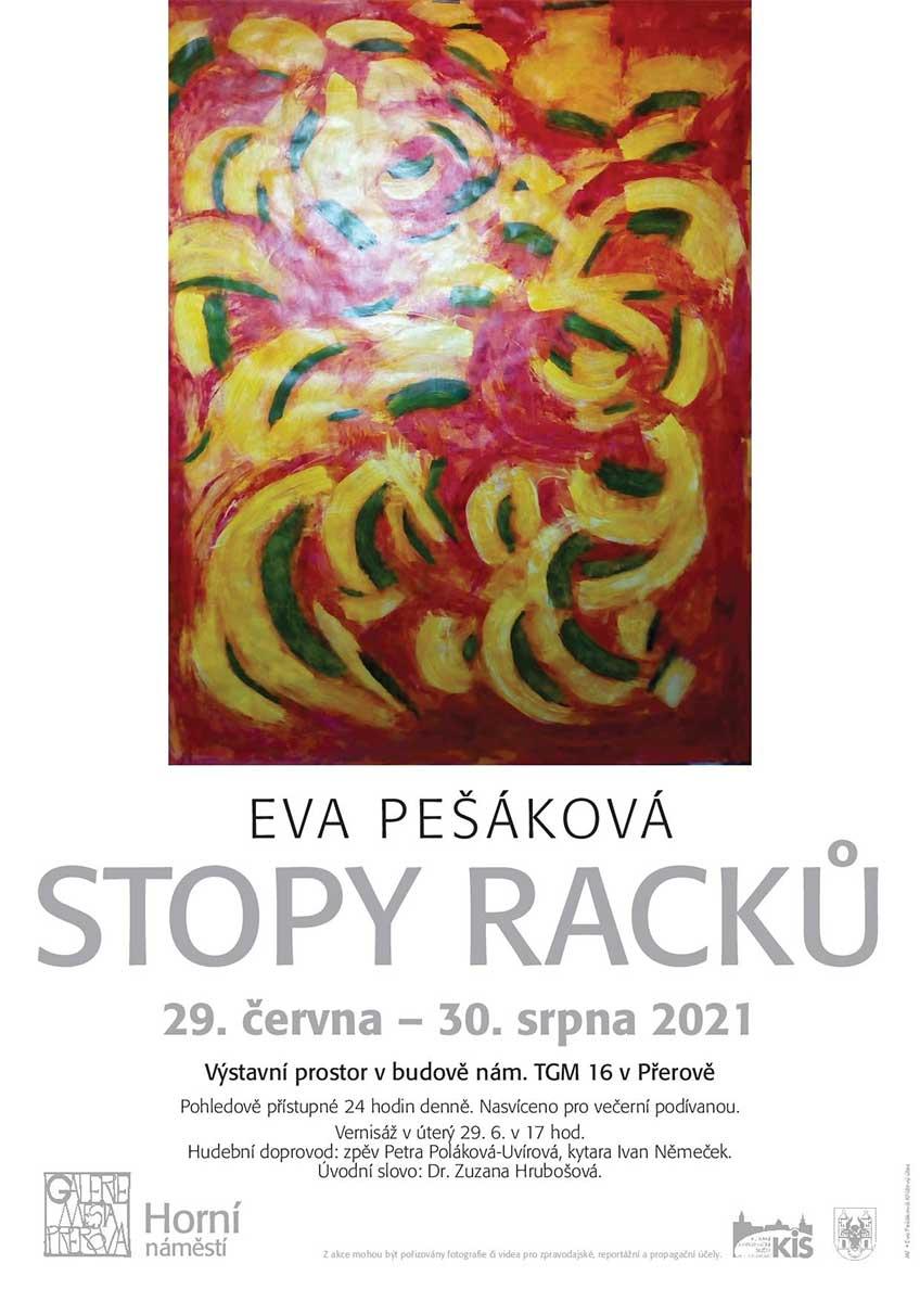 Eva Pešáková - Stopy racků