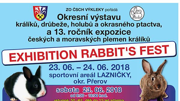 Exhibition Rabbit's Fest