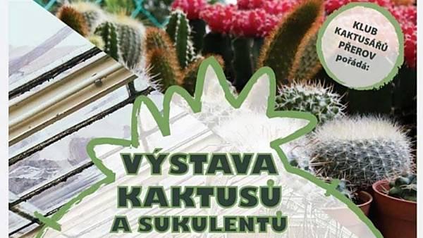 Výstava kaktusů a sukulentů